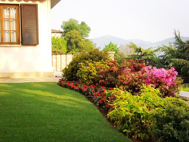 Giardino in collina progettazione giardini for Piante da cespuglio
