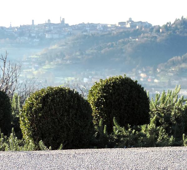 Progettazione giardino e spazi esterni agriturismo for Architettura verde