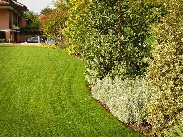 erba rotoli cusago progettazione giardini
