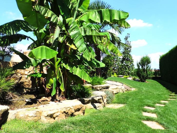 Best giardini rocciosi with giardini rocciosi foto - Giardini rocciosi immagini ...
