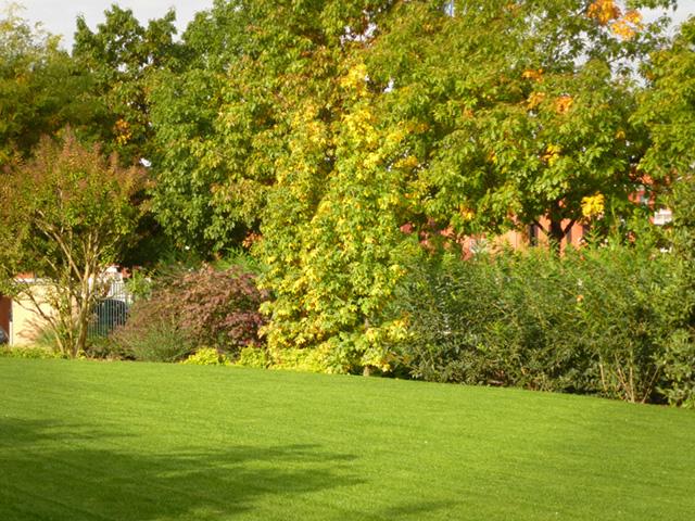 Manutenzione giardini milano progettazione giardini for Progettazione giardini milano